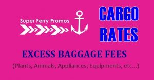 2go travel cargo extra baggage fees